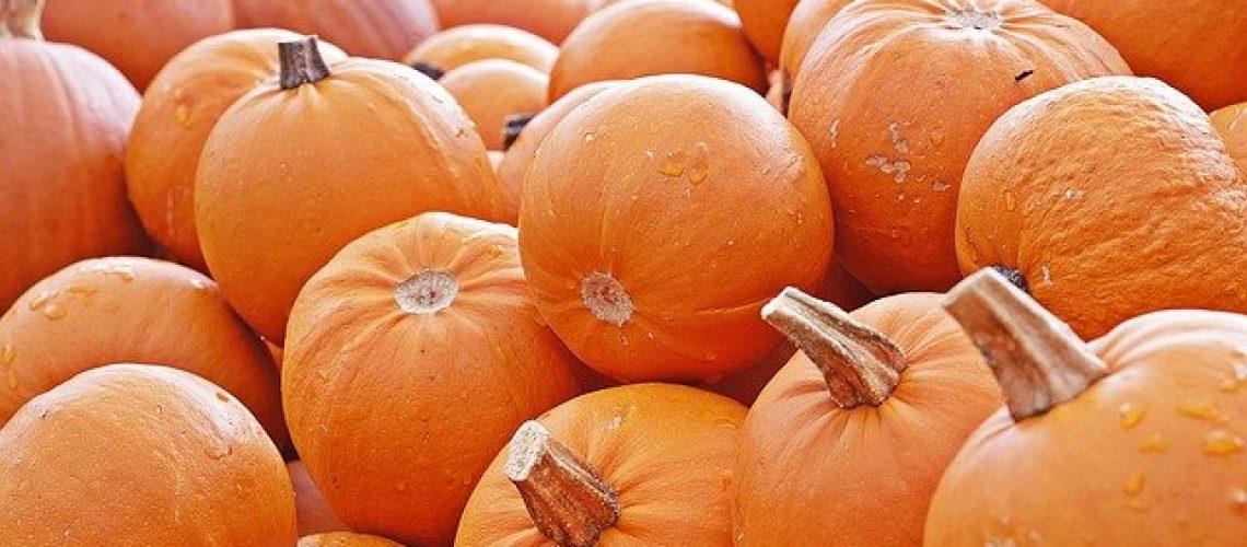 pumpkin-4461665_640